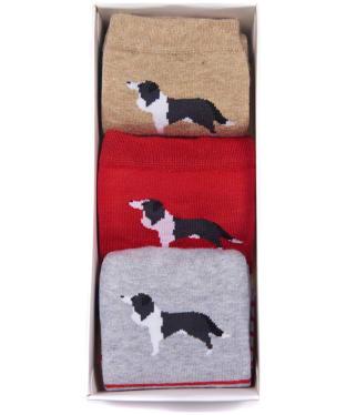 Women's Barbour Collie Stripe Sock Giftbox - Grey / Oatmeal