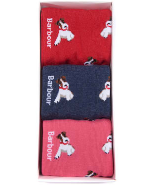Women's Barbour Terrier Stripe Sock Giftbox - Navy / Raspberry