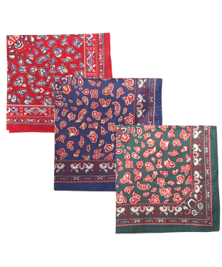 Men's Barbour Paisley Handkerchiefs