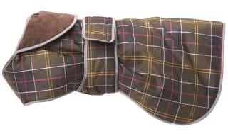 Dog Coats & Accessories