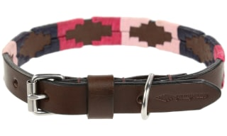 pampeano Dog Collars