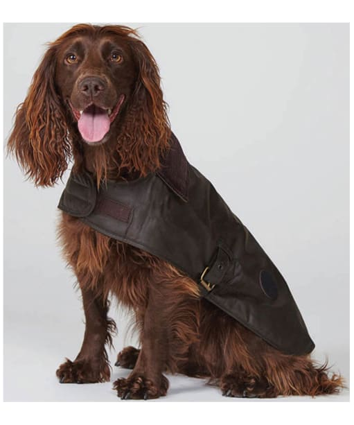 Barbour Wax Dog Coat - Olive