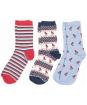 Women's Robin Christmas Sock Gift Box - Multi - Blue / Red