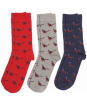 Men's Barbour Pheasant Sock Gift Box - Navy / Grey / Red