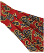 Men's Soprano Silk Twill Paisley Cravat - Red