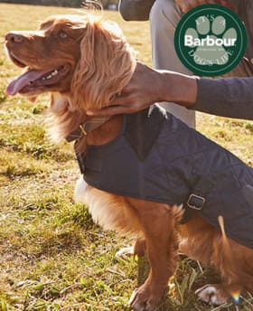 Barbour premium dog accessories